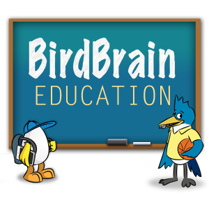Logo for BirdBrain Education